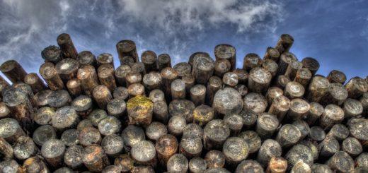 Maison à ossature bois: les 10 étapes de construction
