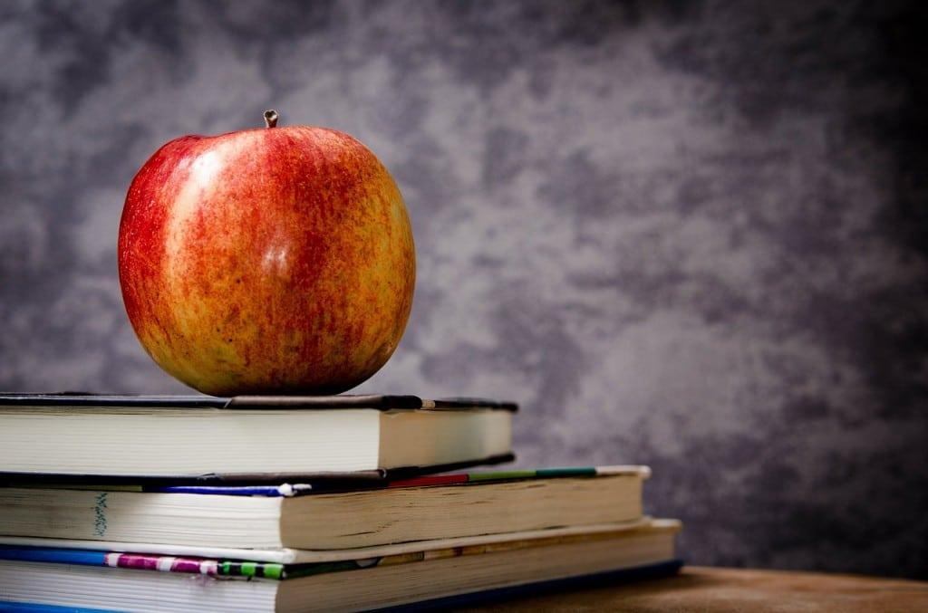 L'heure de choisir son avenir scolaire