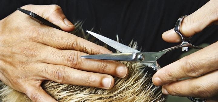 Quel est le matériel pour devenir coiffeuse à domicile ?
