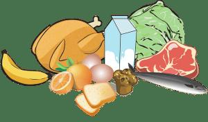 alimantations équlibrée-focus sur les probiotiques