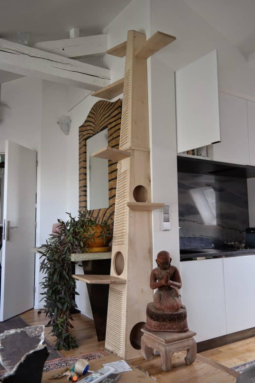 Pourquoi un arbre chat est il indispensable for Maison chat design