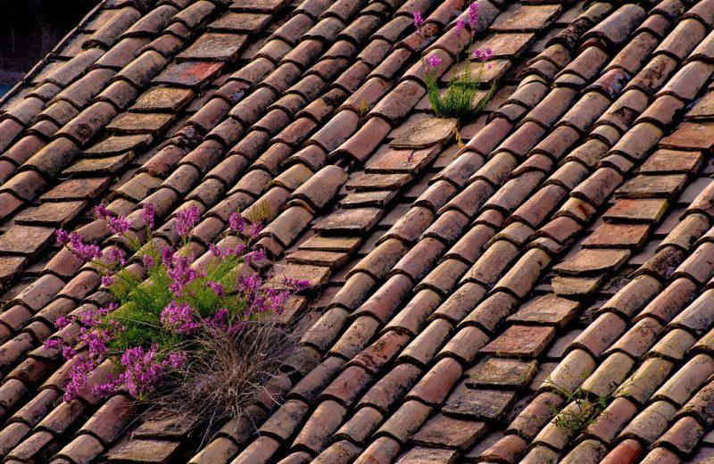 2 façons de préserver l'étanchéité de votre toiture