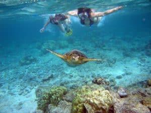 Fond marin Bali