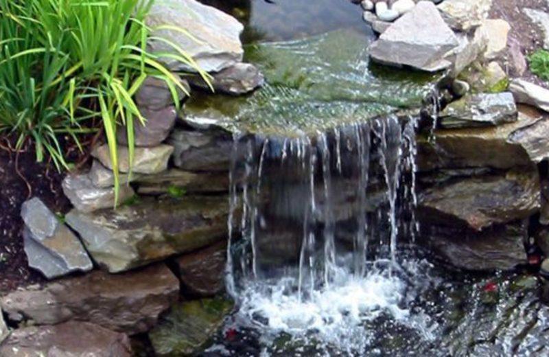 Cascade pour bassin de jardin : comment faire le bon choix ?
