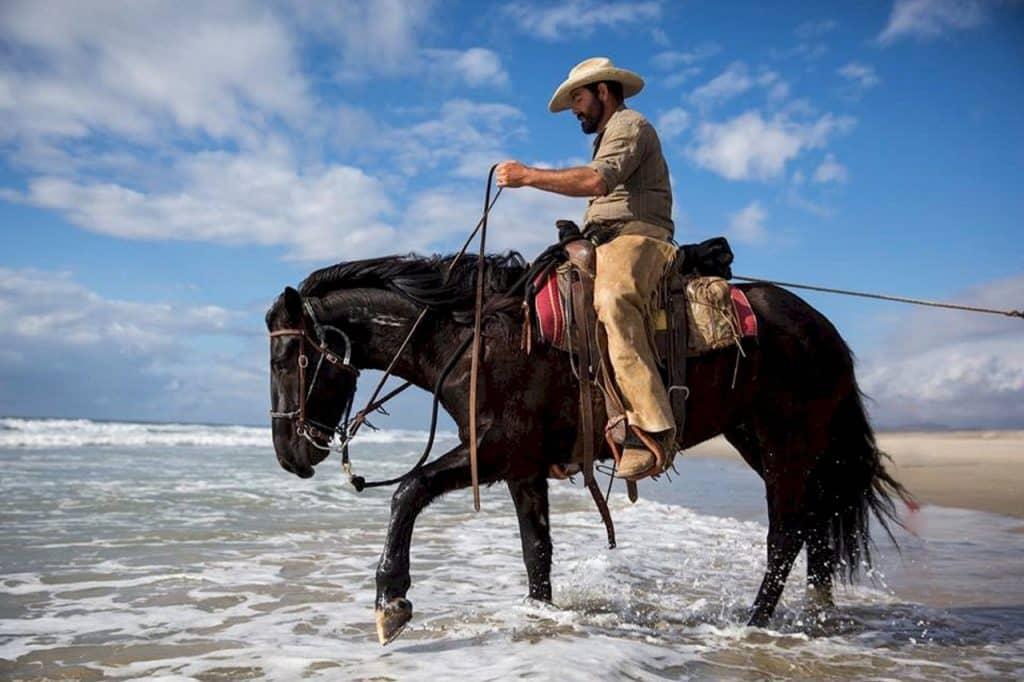 équipement cheval de type western