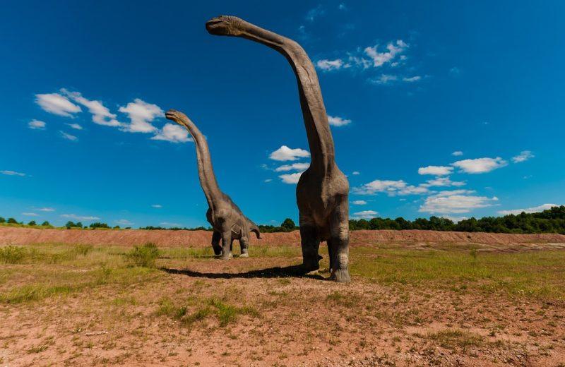Comment créer un univers de dinosaures à votre enfant ?