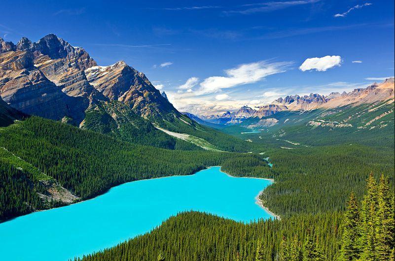 les_plus_beaux_lacs_du_monde_Peyto_Lake_Canada