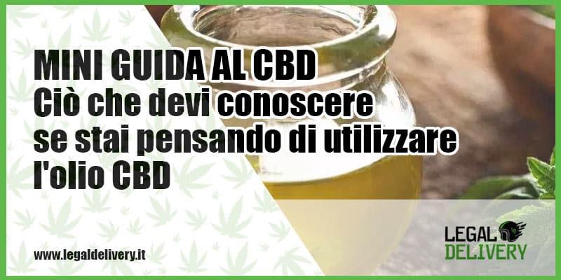 Comment utiliser l'huile de CBD?