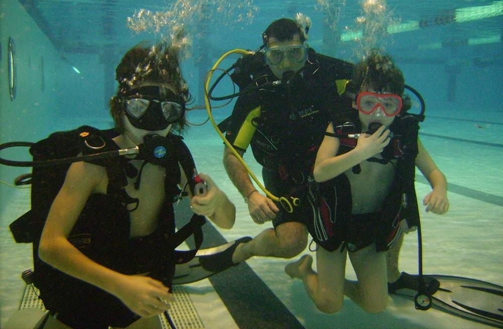 La faune marine n'aura plus de secret pour vous avec l'école de plongée